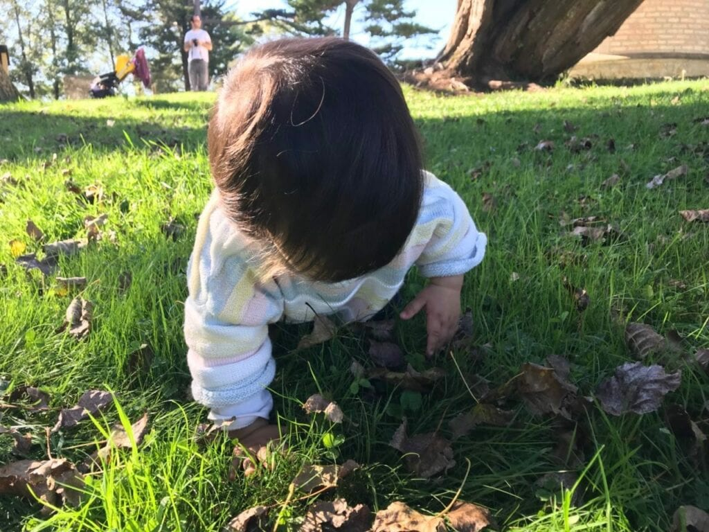explorando os sentidos na natureza