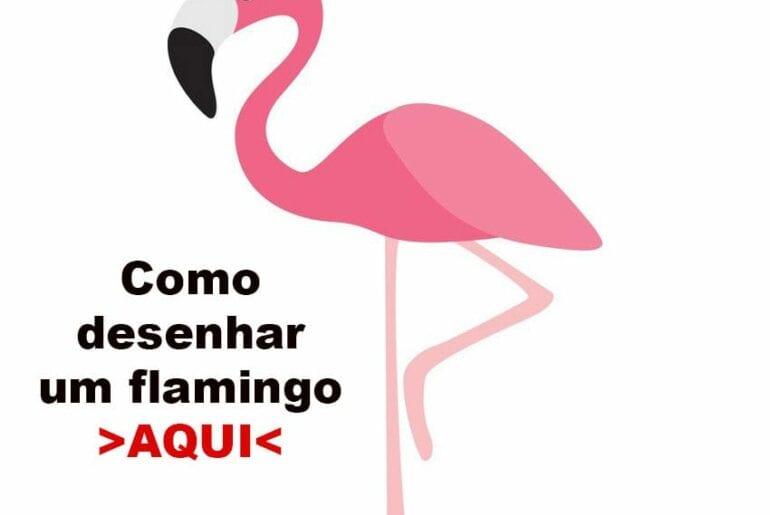 como-desenhar-flamingo
