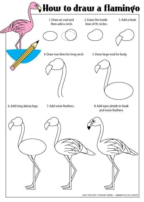 Como fazer o desenho de um flamingo