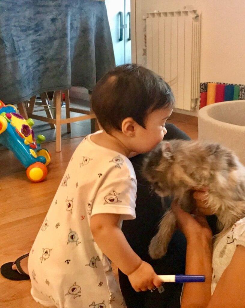 crianca afrontando duelo animal 07