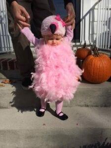 Fantasia de flamingo para bebê
