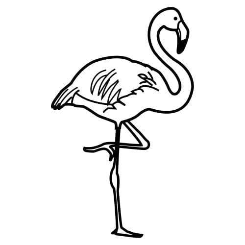 imagens de flamingo para colorir