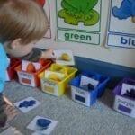 Classificação de animais por cores