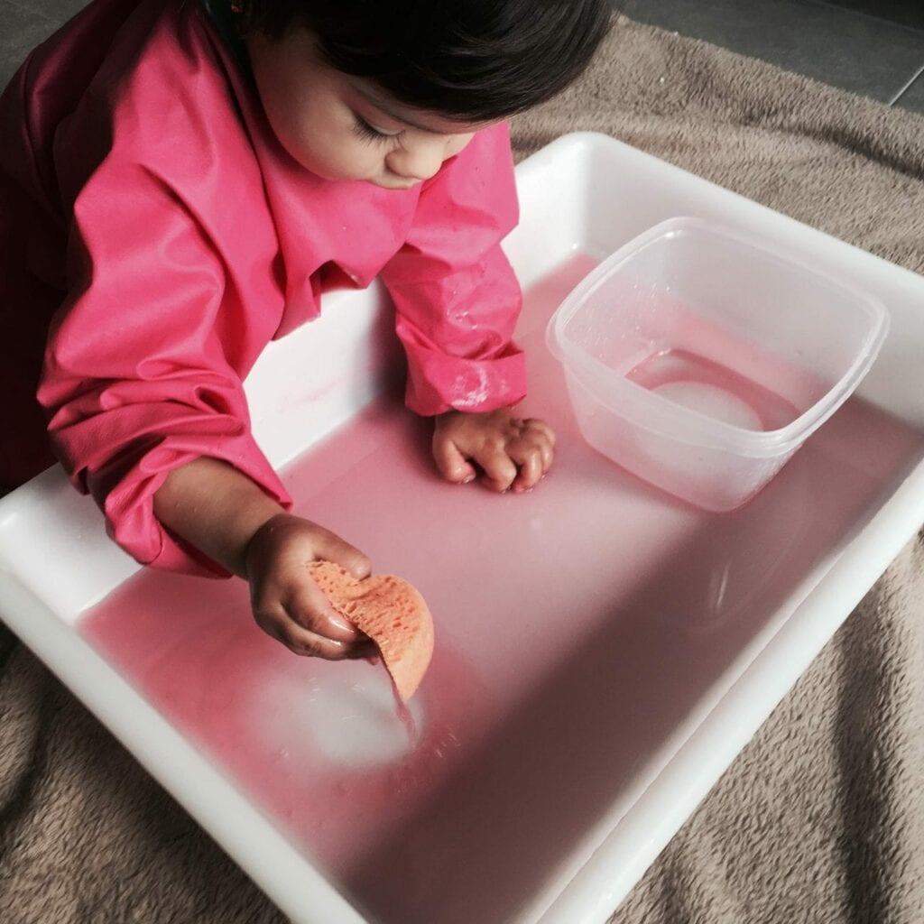 transferencia de liquidos com esponja atividade 13