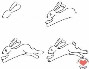 desenhos-para-desenhar-coelho