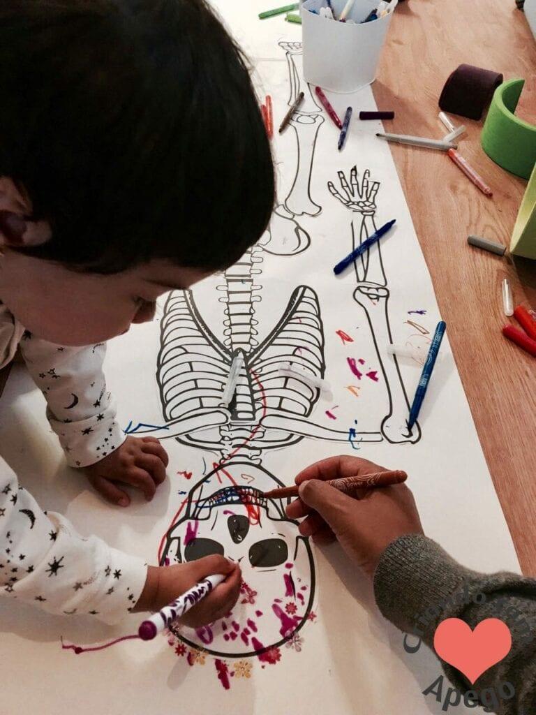 esqueleto-humano-completo-15