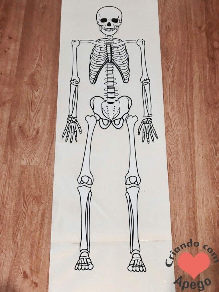 esqueleto-humano-completo-atividades-para-imprimir-04