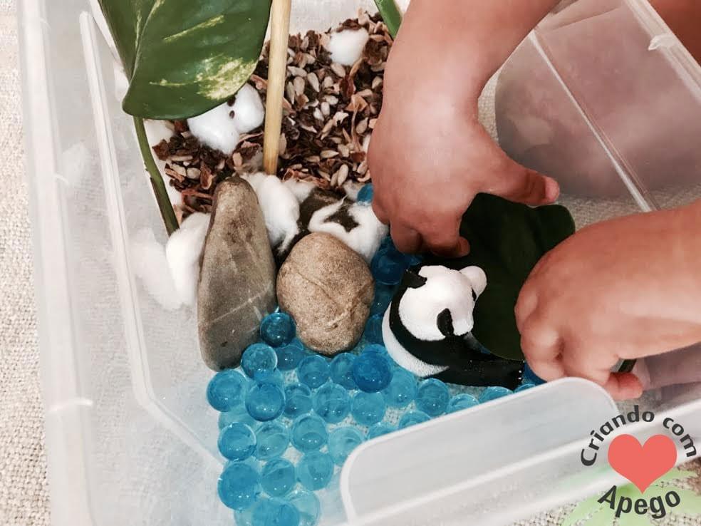 minimundo-habitat-do-urso-12