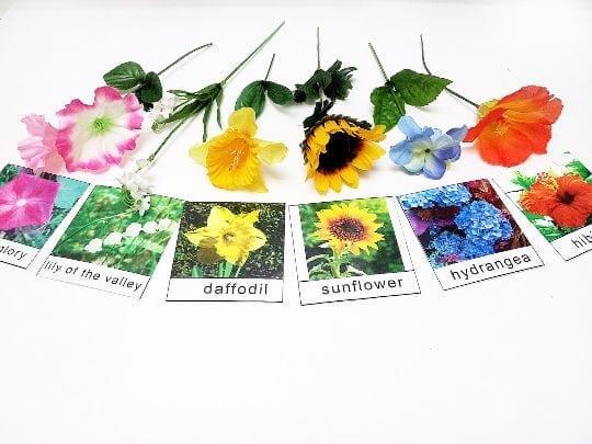 ampliar vocabulario atividades sobre a primavera