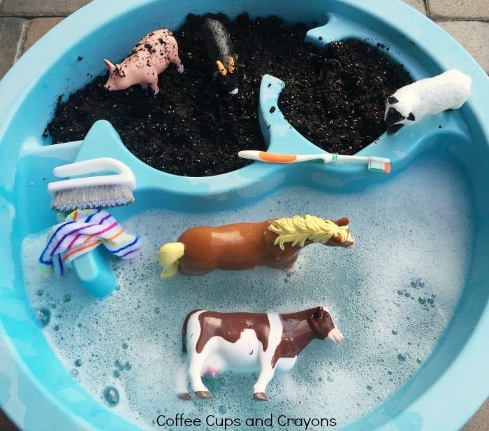 atividades sobre animais banho