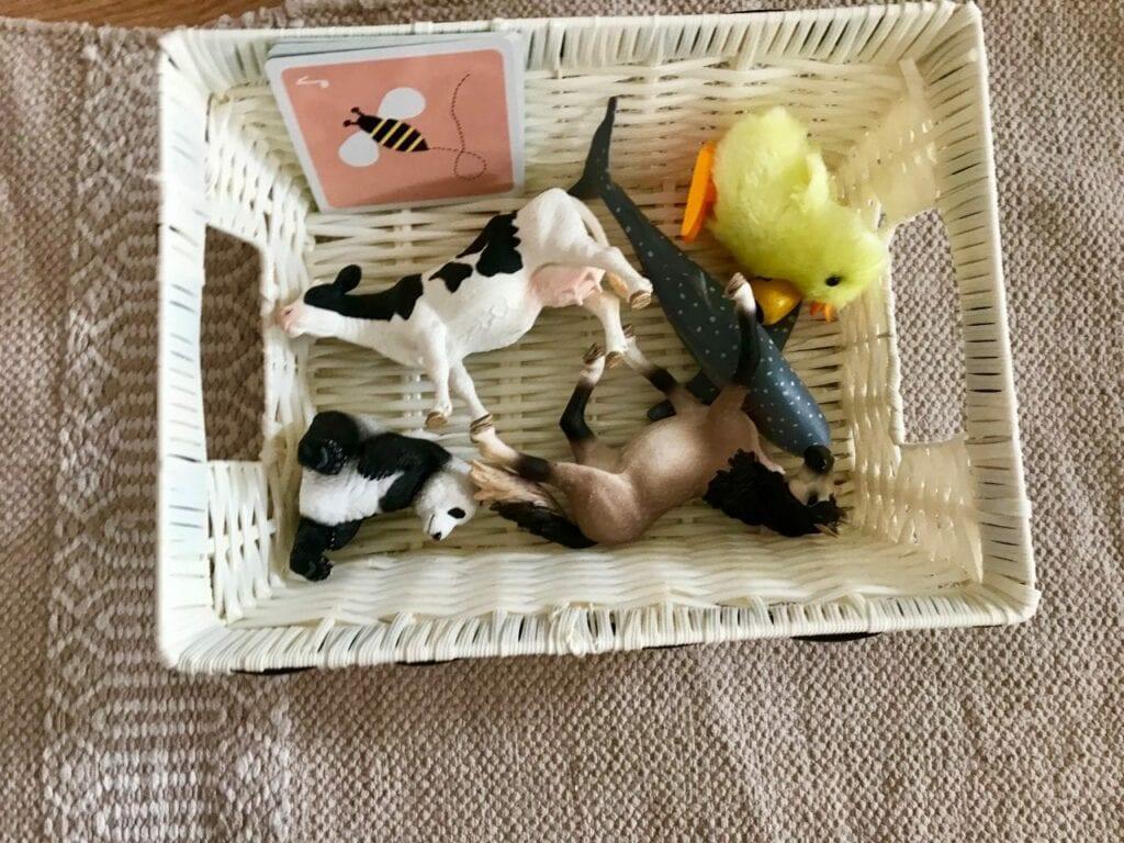 atividades sobre animais metodo montessori 01