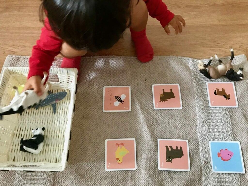 atividades sobre animais metodo montessori 03