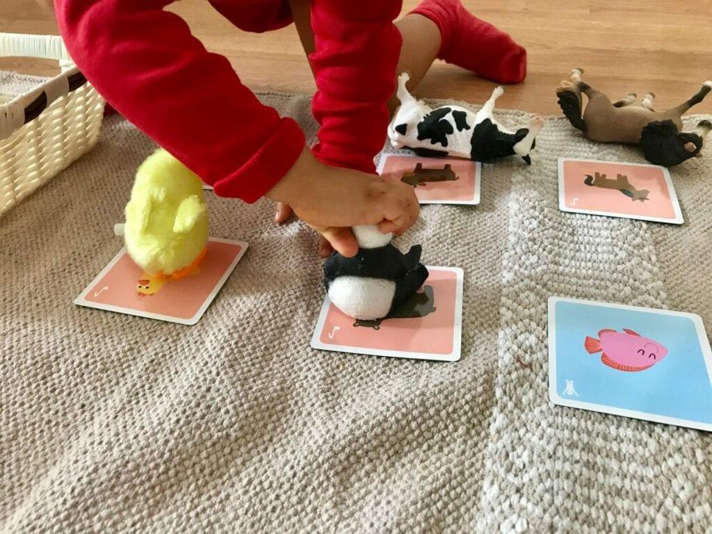 atividades sobre animais metodo montessori 05