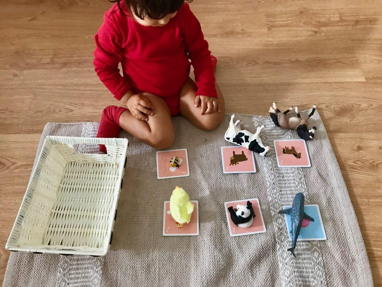 atividades sobre animais metodo montessori 06