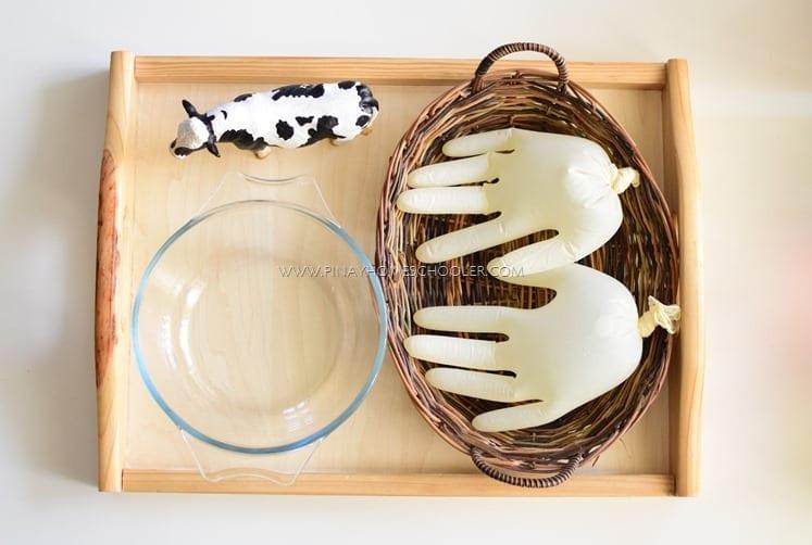 atividades sobre animais montessori tirar leite da vaca 01