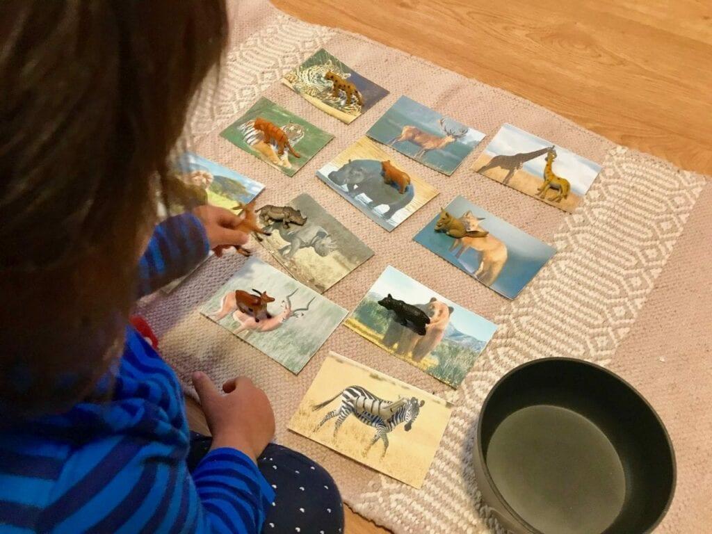 Atividades sobre animais selvagens para educacao infantil 04