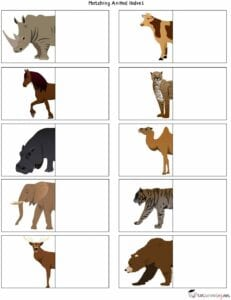 Atividades sobre animais selvagens para educacao infantil 06
