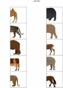 Atividades sobre animais selvagens para educacao infantil 07