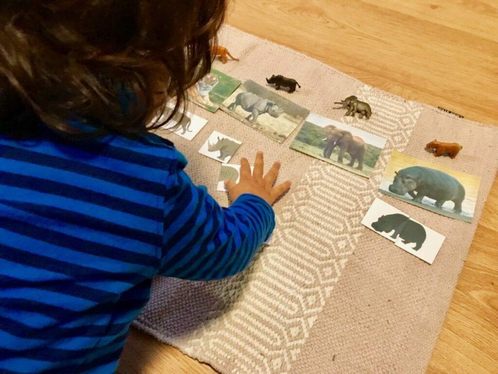 Atividades sobre animais selvagens para educacao infantil 08