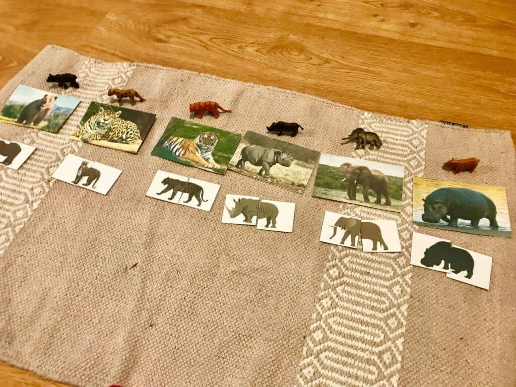 Atividades sobre animais selvagens para educacao infantil 10