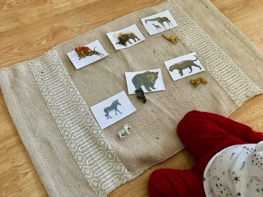 Atividades sobre animais selvagens para educacao infantil 14
