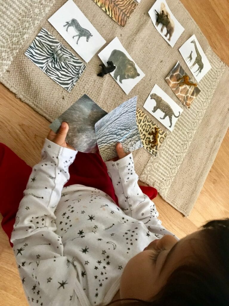 Atividades sobre animais selvagens para educacao infantil 15