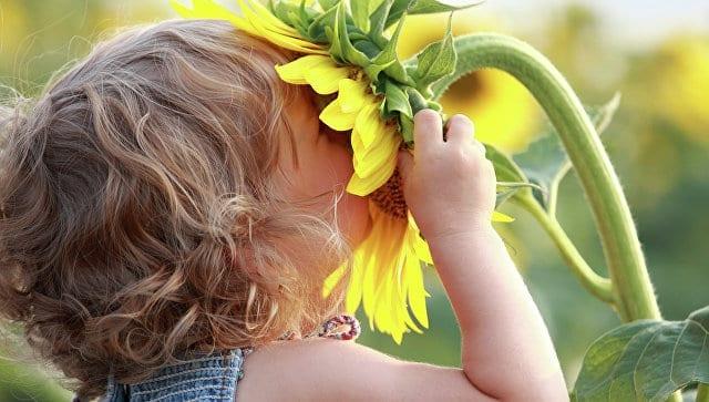 tecnica de cheirar uma flor