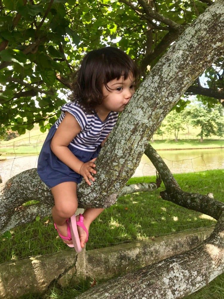 natureza como patio de brincar da crianca 02