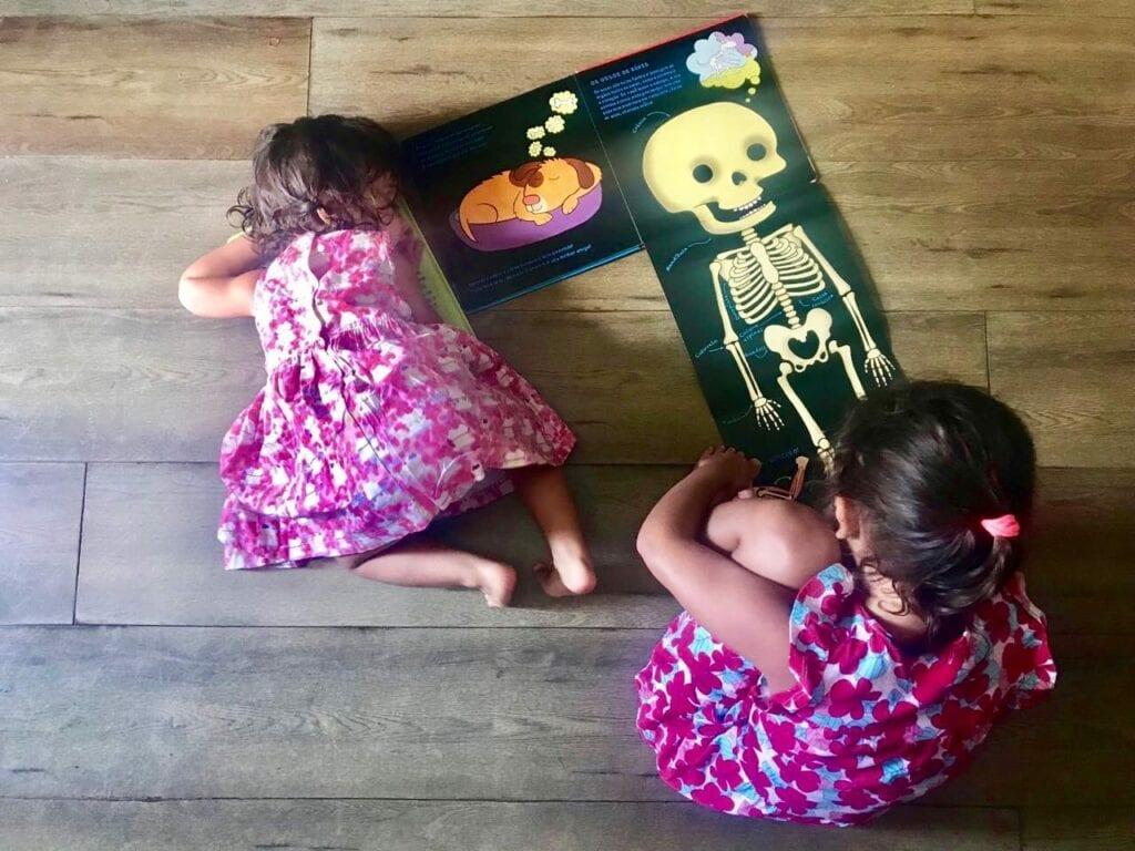o corpo de boris livro infantil sobre corpo humano 08