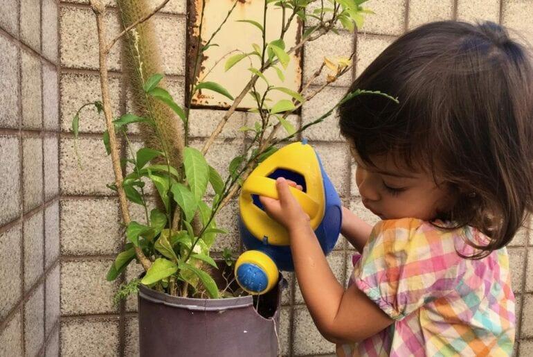 regar plantas vida pratica montessori 01