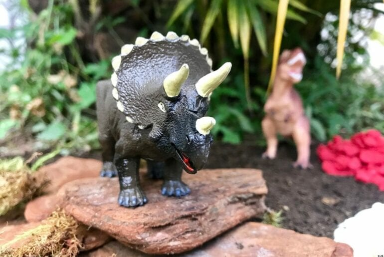terrario para dinossauros 06