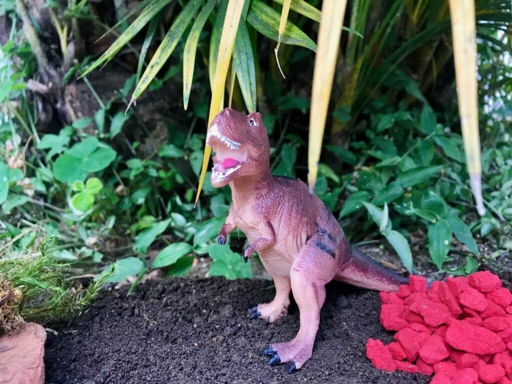 terrario para dinossauros 07