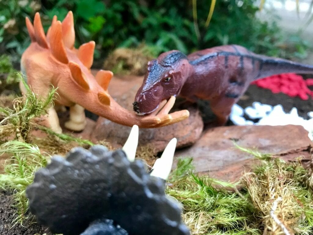 terrario para dinossauros 09