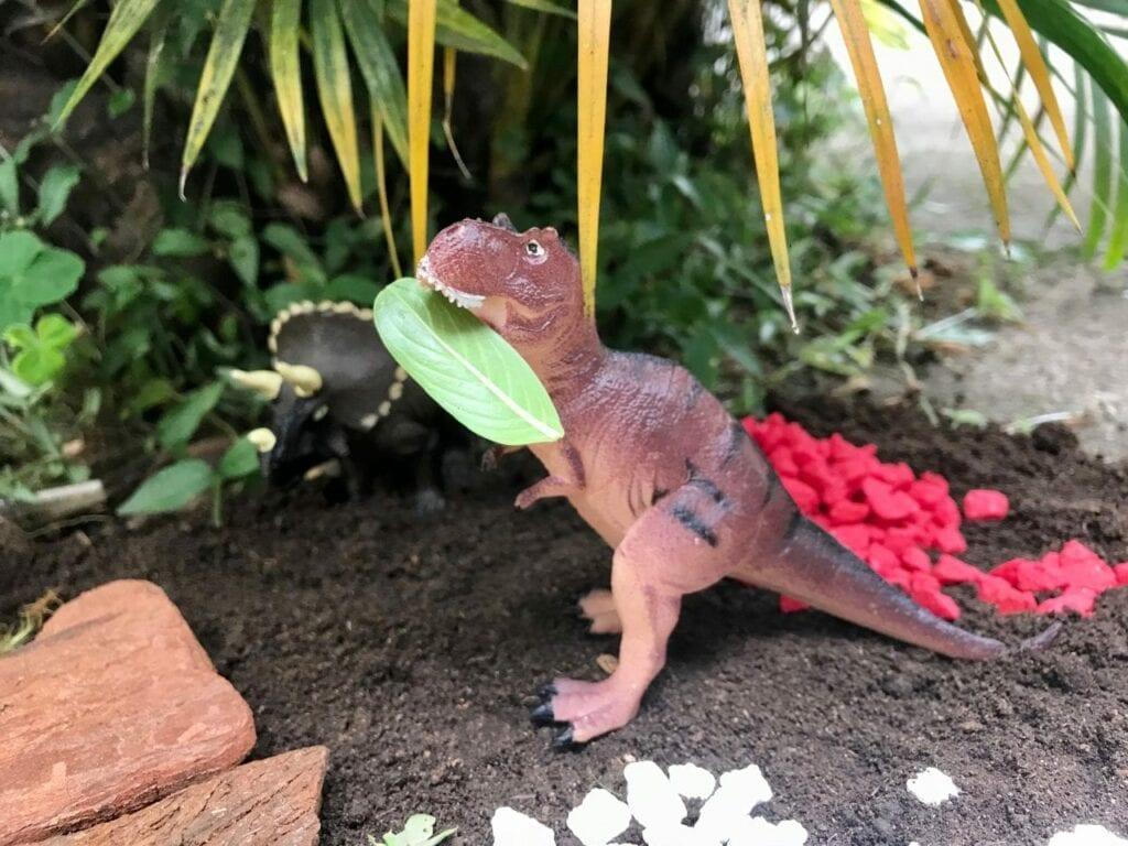 terrario para dinossauros 10