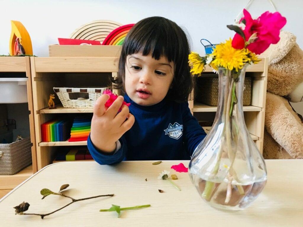 fazer arranjos de flores vida pratica montessori 08