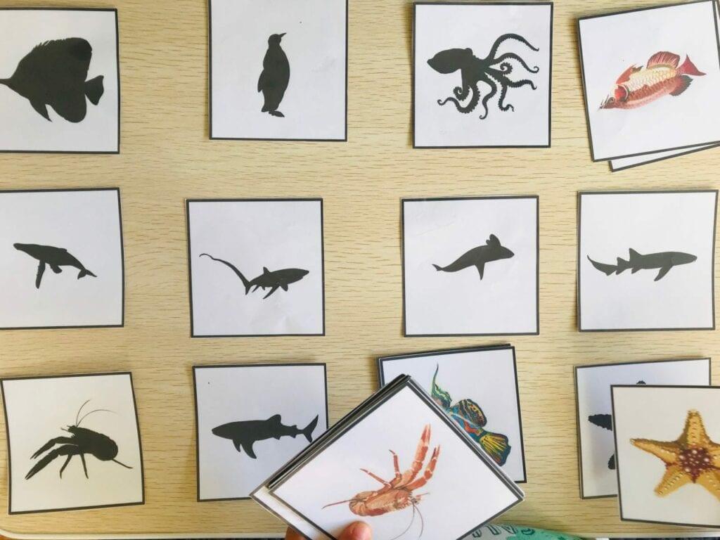 Atividade de pareamento com silhuetas de animais marinhos 03