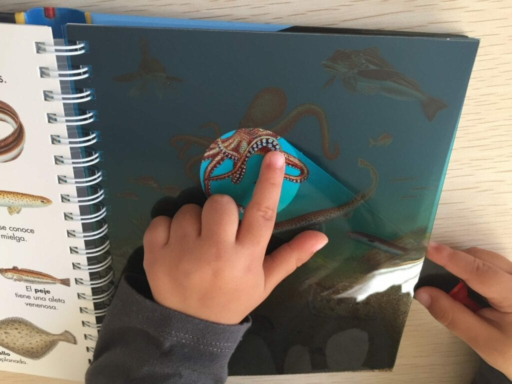 livro os animais marinhos com lanterna 02