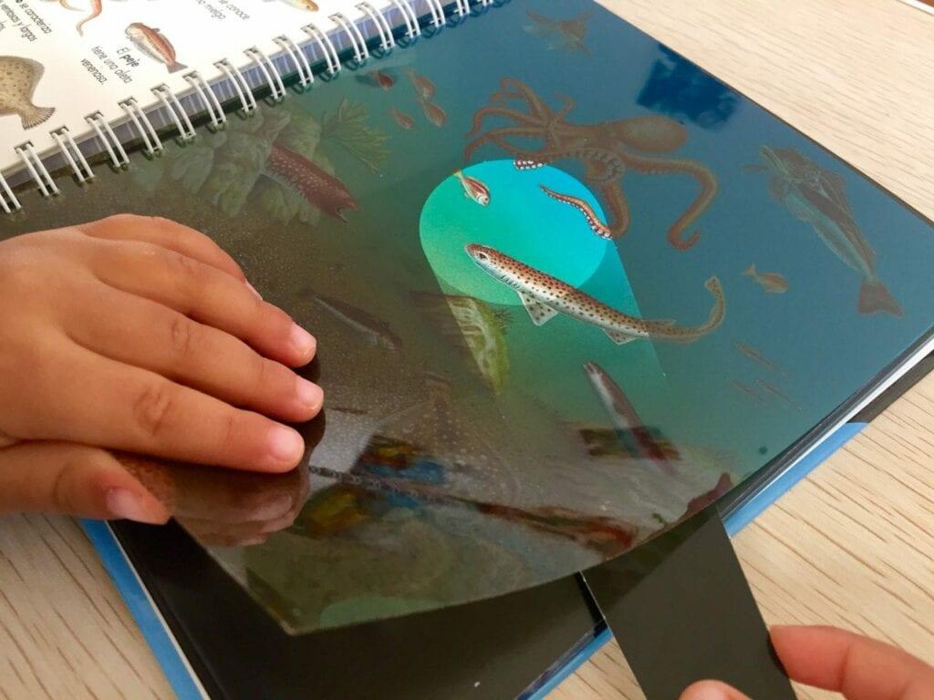 livro os animais marinhos com lanterna 03