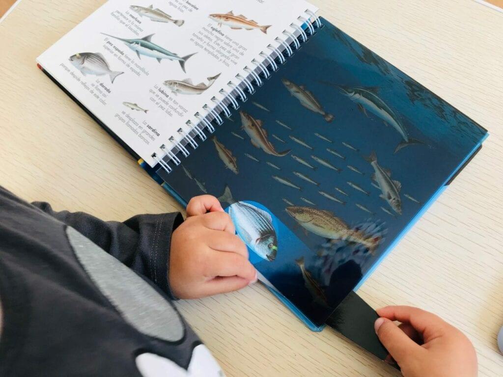 livro os animais marinhos com lanterna 07