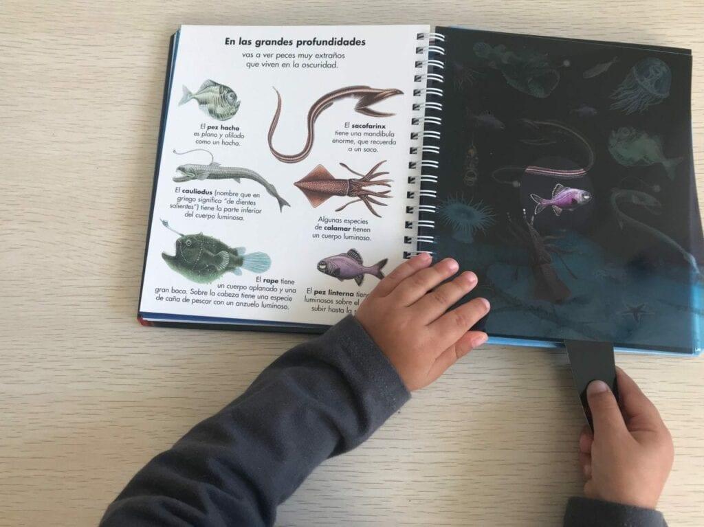 livro os animais marinhos com lanterna 09