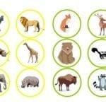 loteria dos animais 08