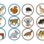 loteria dos animais 09