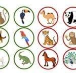 loteria dos animais 10