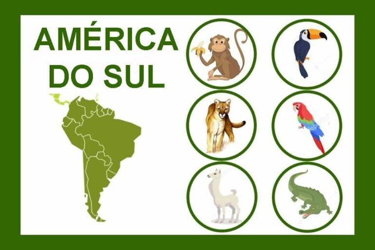 loteria dos animais do mundo 02