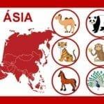 loteria dos animais do mundo 03