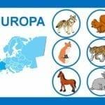 loteria dos animais do mundo 05
