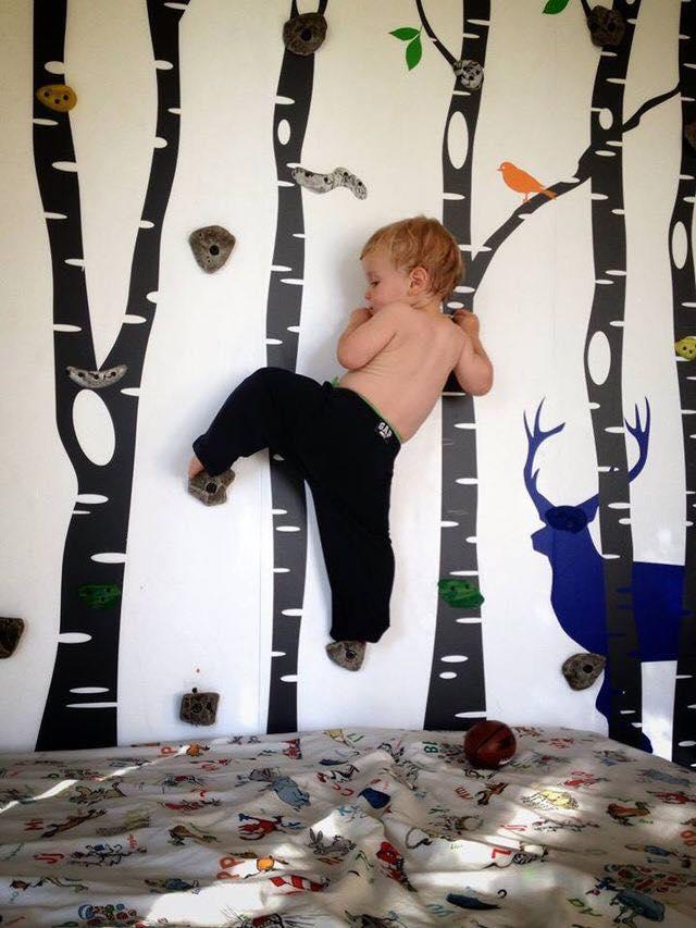 Paredes de escalada para o quarto das criancas 10