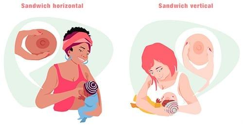 como segurar o peito aleitamento materno