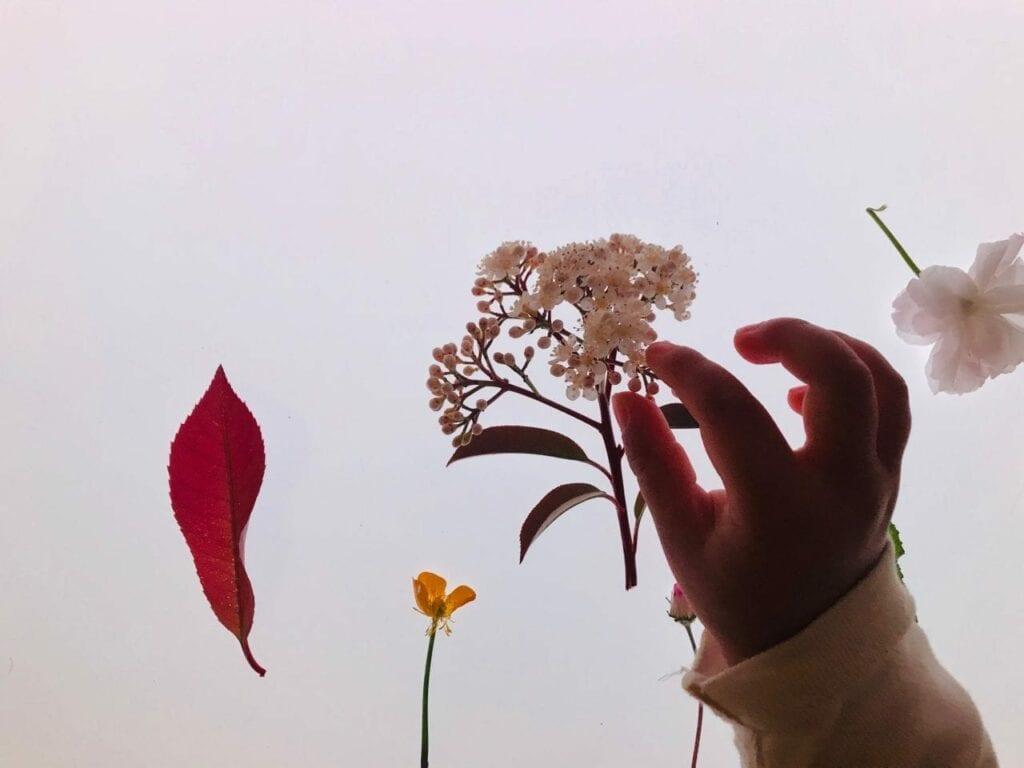 flores da primavera na mesa de luz 04