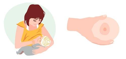 posicoes para amamentar como segurar o peito